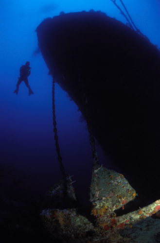 Grenada Diving - Island Activities
